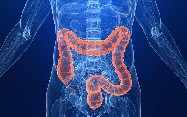 Δωρεάν προληπτική εξέταση για τον καρκίνο του παχέος εντέρου από το Σύλλογο Καρκινοπαθών Αργολίδας