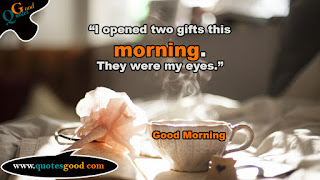 Morning quote - I Opened two gifts this Morning