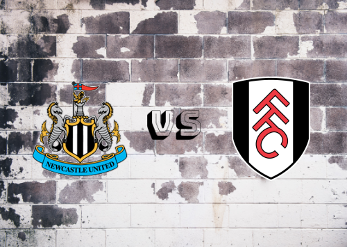 Newcastle United vs Fulham  Resumen