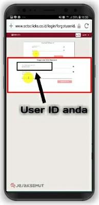 cara mengetahui user id octo clicks
