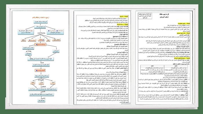 ملخص تركيب البروتين في العلوم الطبيعية للسنة الثالثة ثانوي