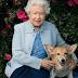 Δύο νέοι σκύλοι στην ζωή της βασίλισσας