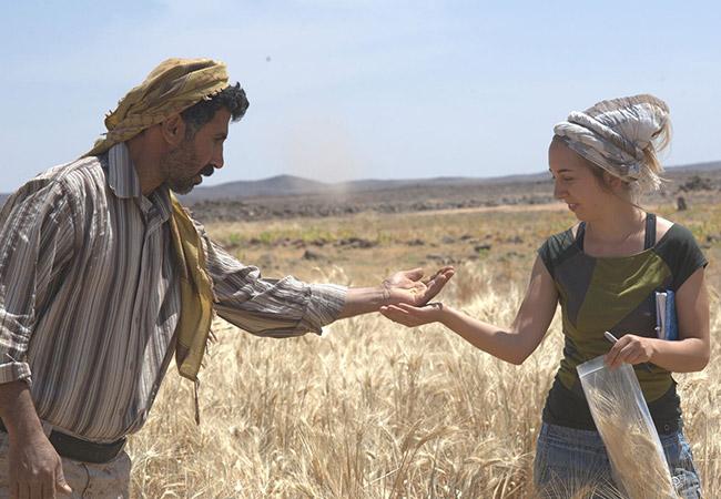 Penelitian Archaeobotanical reveals the origin of bread 14,400 years ago in Jordan