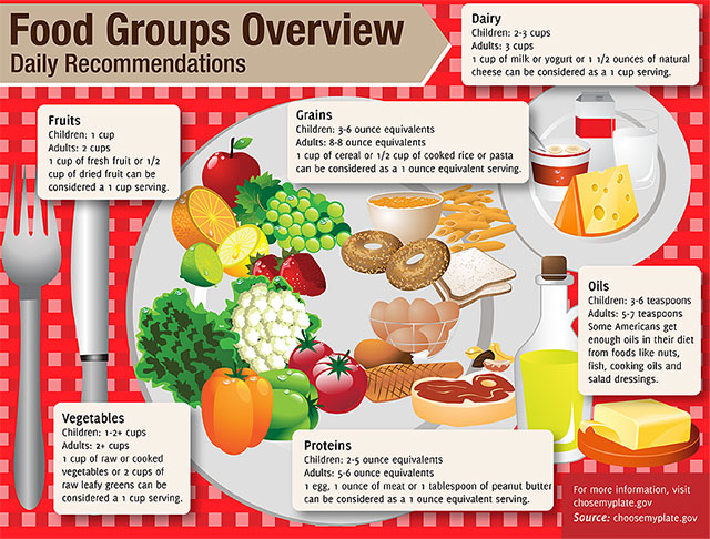 Healthy Foodies Infographic Daily Nutritional Needs For