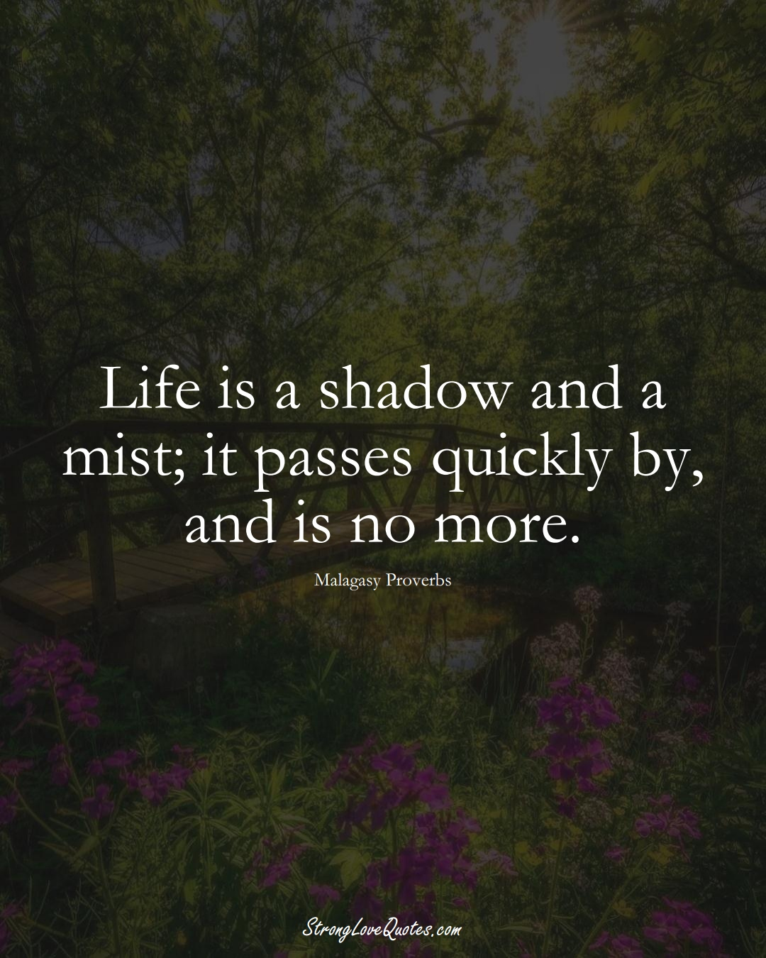 Life is a shadow and a mist; it passes quickly by, and is no more. (Malagasy Sayings);  #AfricanSayings