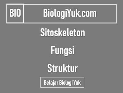 Sitoskeleton: Fungsi dan Struktur Lengkap