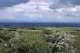 A view of the plains of South Kildare, where Ardreigh was situated