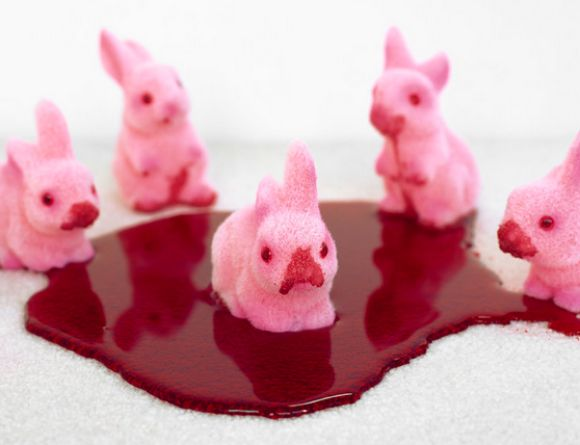 Liz Wolfe - Photography - Blood Bunnies