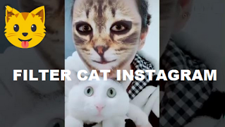 Cat Filter Instagram || How to Get Filter Cat instagram And Tiktok