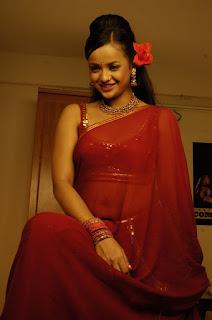 South-actress-transparent-saree-picture