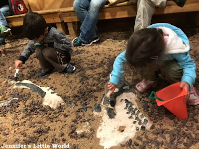 Dinosaur digging at the Orlando Science Center