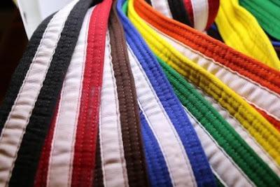 various taekwondo belts