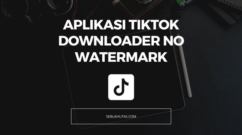 download apk tiktok downloader no watermark