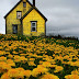 PHOTOGRAPHY: Abandoned Yellow House in Nova Scotia.