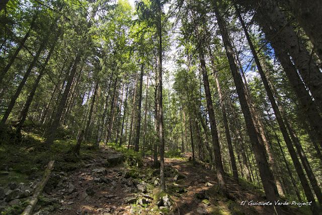 Senderos de Sognsvann  a Ullevålseter - Oslo por El Guisante Verde Project