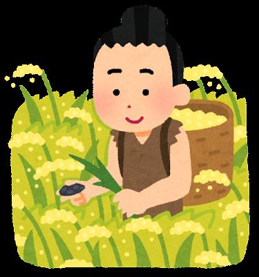 稲作のイラスト