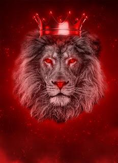 Lion King Mobile HD Wallpaper