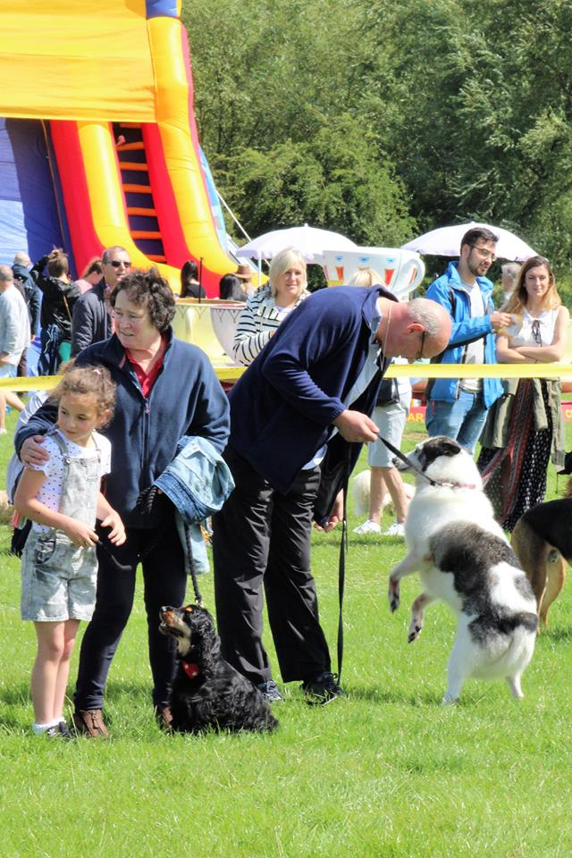 Dogs Trust Wymeswold Fun Day
