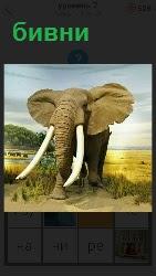 460 слов 4 стоит слон с огромными бивнями 7 уровень