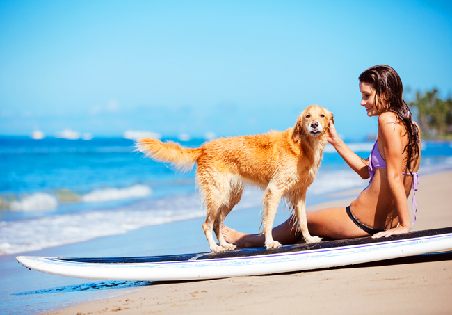Co trzeba zabrać, jadąc na urlop z psem?