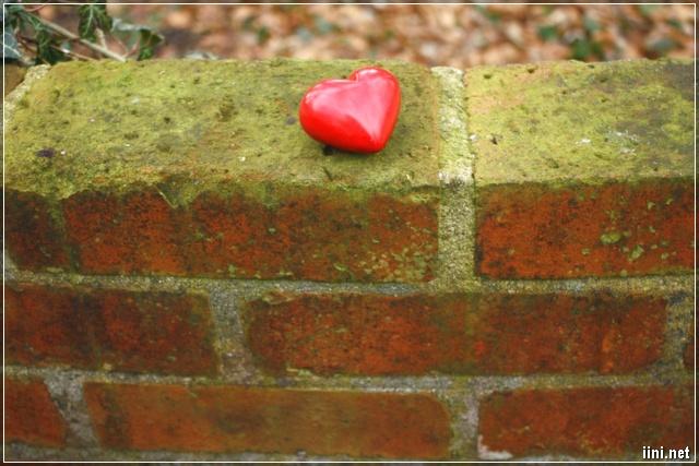 Ảnh trái tim trên tường gạch