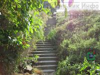Сходи на Латовку лестница