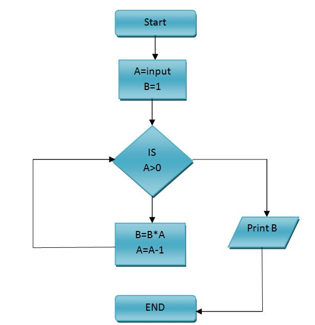 Girfa   Student Help  Flow Chart Factorial Number