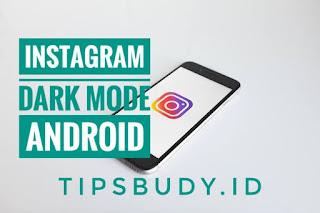 tipsbudy