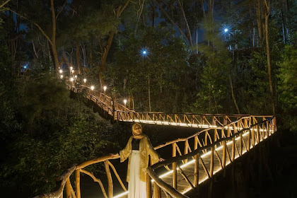 Lokasi dan Tiket Masuk Wisata Malam Seribu Batu Songgo Langit Terbaru
