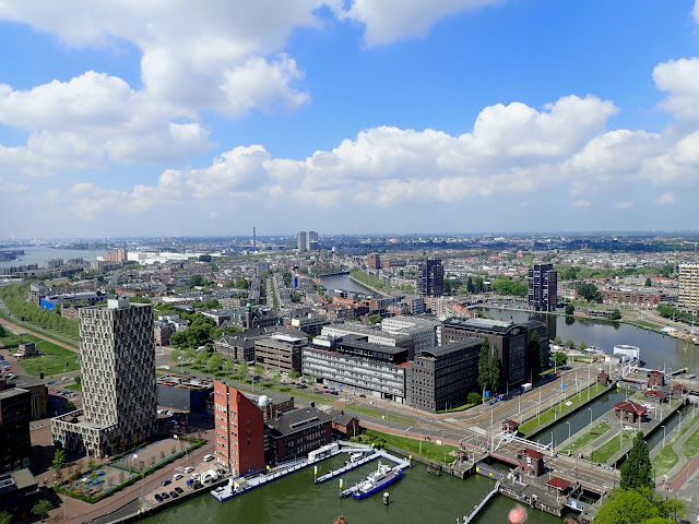 What to do in Rotterdam City Guide Cruise Port Northern Europe Cruise