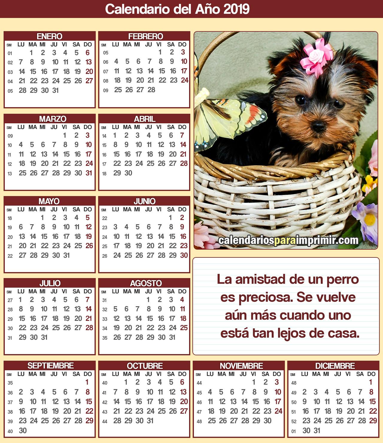 calendario 2019 para imprimir mascota