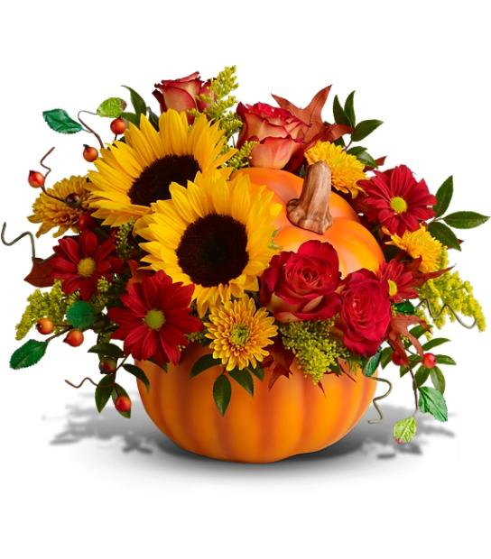 Flowers In A Pumpkin: Dear Big Night Sky Of Fireflies: Beginning Of FALL