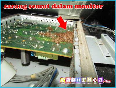 cara membuka casing monitor lg untuk membersihkan semut yang bersarang didalamnya capuraca.blogspot.com