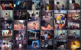 El muro del silencio. 1974.