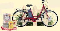 Logo ''Amore per la Natura con Pai'': vinci cestini da Pic Nic e Bici elettriche Masciaghi