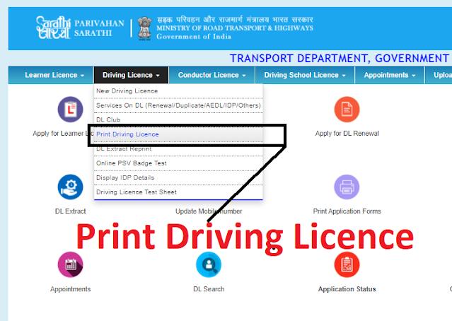 digital driving licence download
