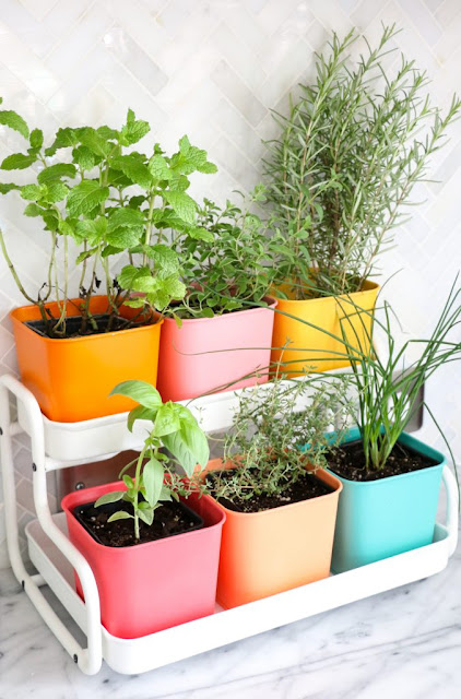 11 tiny herb gardens you 39 ll love for your small space my best badi - Herb gardens for small spaces gallery ...