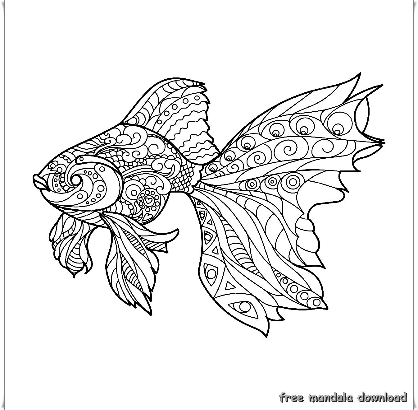 golden fish mandalagoldener fisch mandala  free mandala
