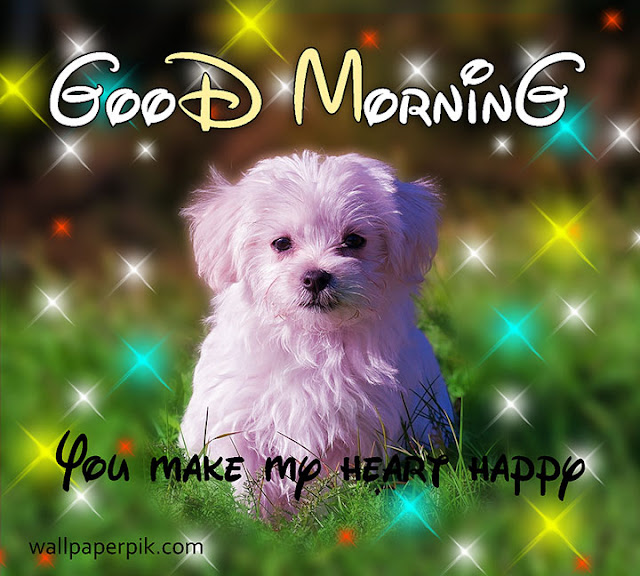 download cute good morning image with dog puppy
