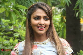 Amala Paul Pictures at Amma Kanakku Press Meet ~ Bollywood and South Indian Cinema Actress Exclusive Picture Galleries