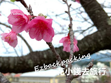 2020年沖繩櫻花情報+預測+櫻花祭(1月19日更新)