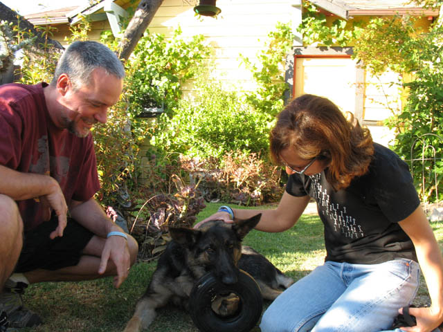 Man, woman and tri paw German Shepherd dog