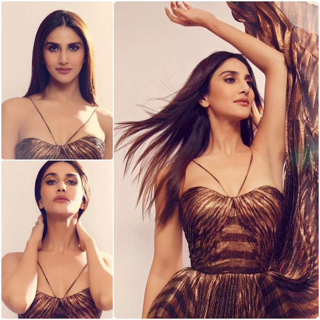 Vaani Kapoor Slick Straight Hair