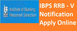 IBPS RRB - V 2016  Notification Apply Online PDF Free Download