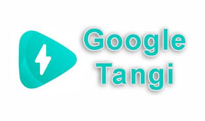 Google Tangi - аналог TikTok?