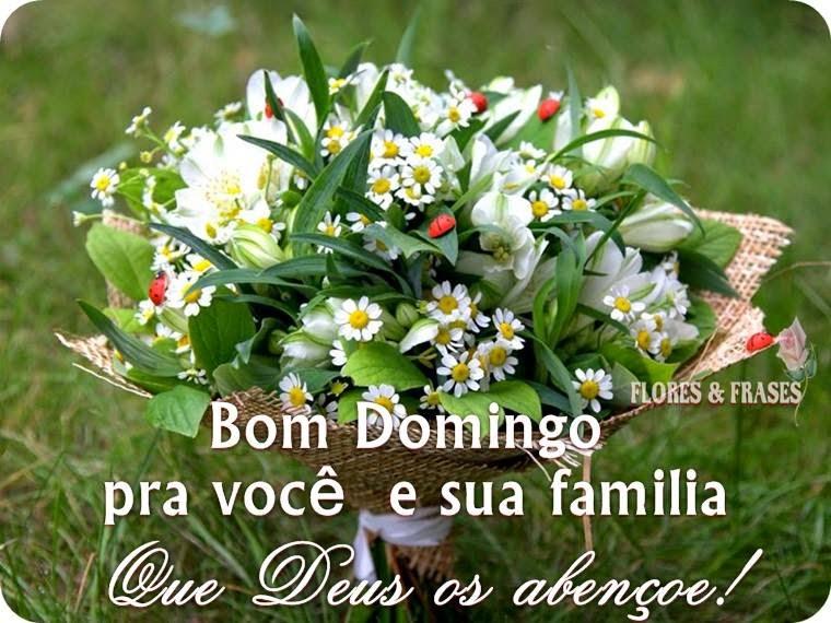 Frases De Bom Domingo: Flores E Frases: BOM DIA E FELIZ DOMINGO