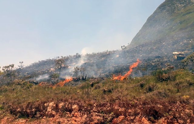 Apenas a prefeitura local está dando assistência com logística e alimentação (Foto: Divulgação)