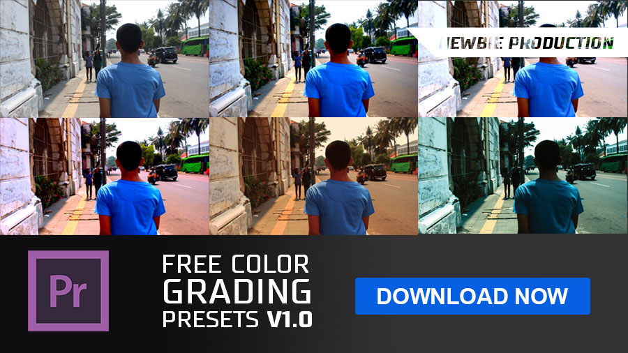 Newbie Production Free Color Grading Presets V10