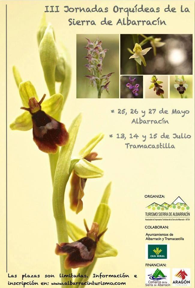 III Jornadas Orquídeas de la Sierra de Albarracín