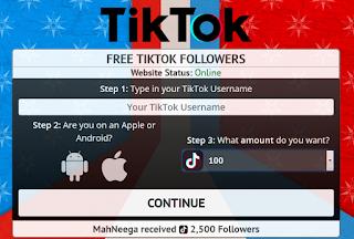 Viatoolbox ||  Free Followers tiktok from viatoolbox.com/tiktok/